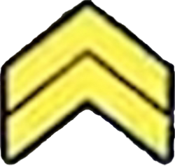 Surge stage 1 icon