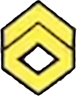 Surge stage 3 icon
