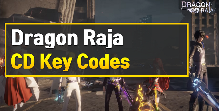 Dragon Raja CD Key Codes