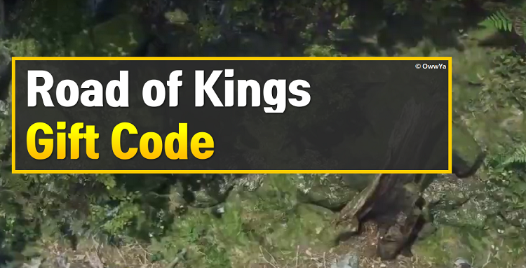 Road of Kings Gift Code